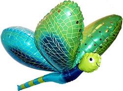Dragonfly 12€