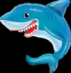 Shark 10€