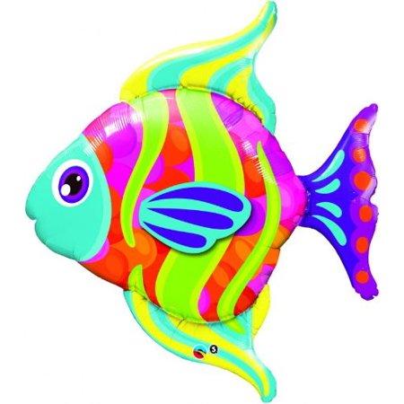 Fish 8€