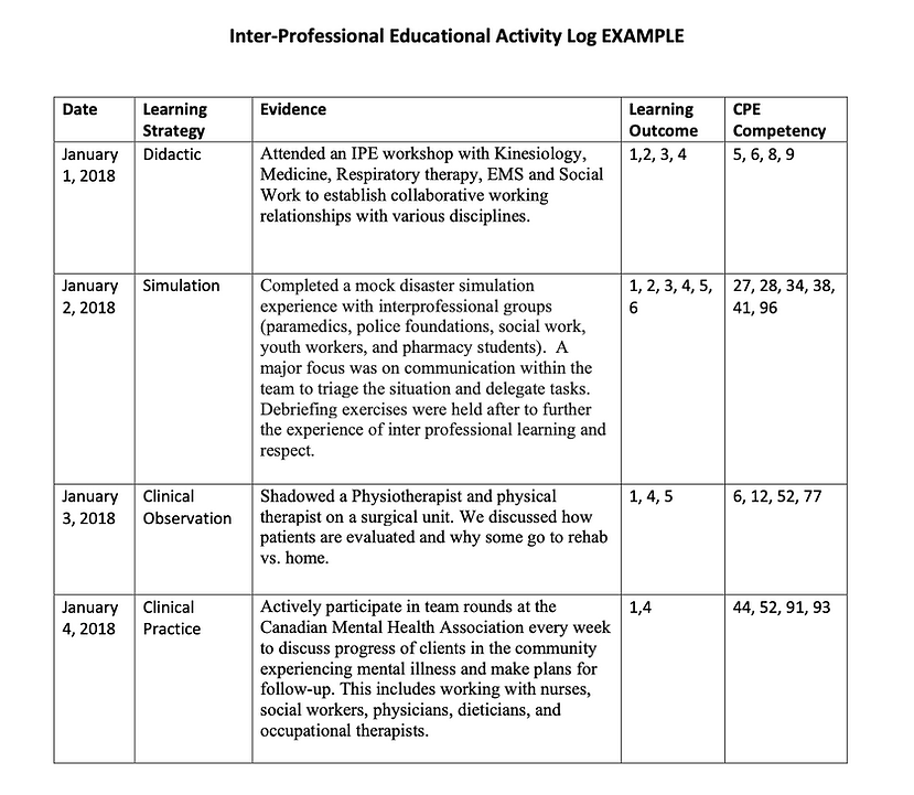 IPE Activity Log Example.png