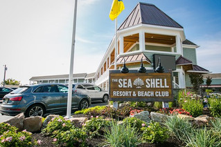 Seashell Outing - July 18