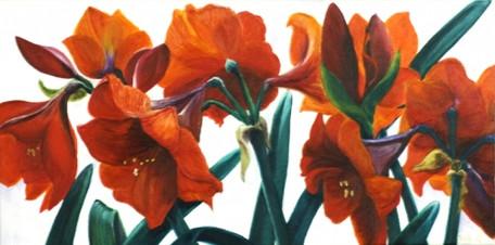 Yosi's flowers