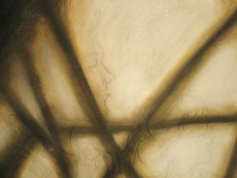 shadows- detail