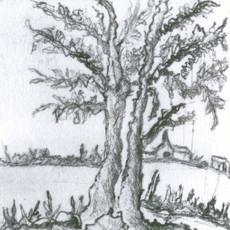 Village thru tree