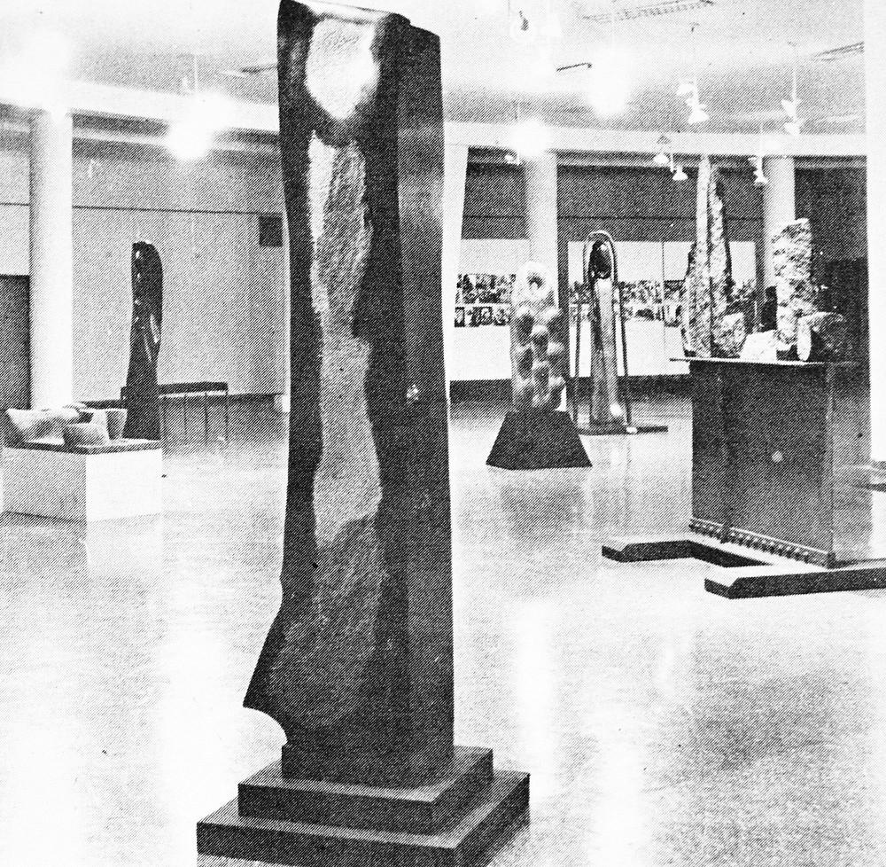 Exposición de Jorge Michel en Salas Nacionales