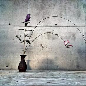 Ikebana o el camino de las flores