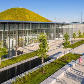Arquitectura, biofilia y biblioteca
