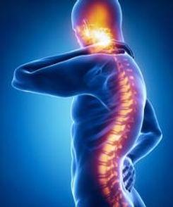 Chiropractic 3 (1).jpg