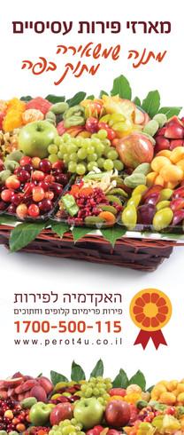 rollup_Fruit Academy2.jpg