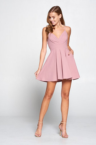 Jana Pleated Fit and Flare Dress in Blush