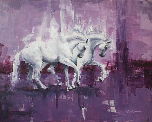 White On Violet
