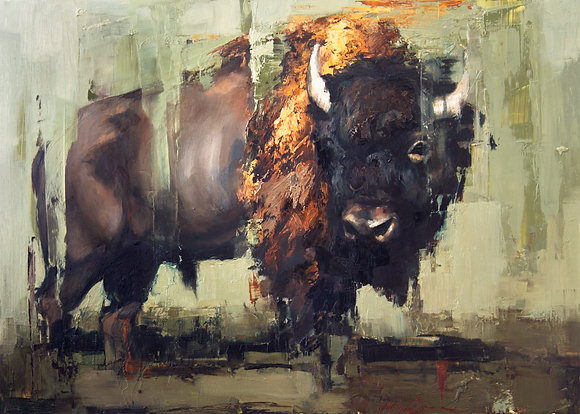 Solitary Bison