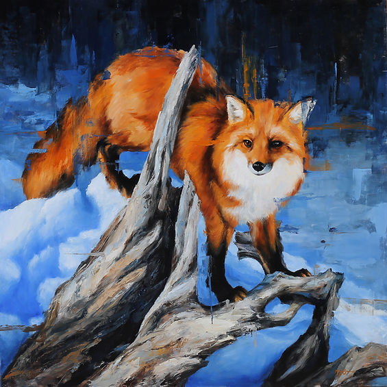 Winter Fox, 36x36%22 by Morgan Cameron A