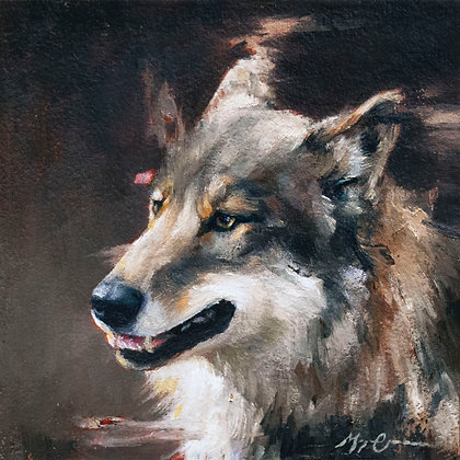 Timberwolf Portrait