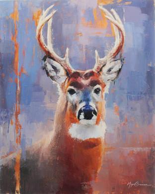 Buck Portrait