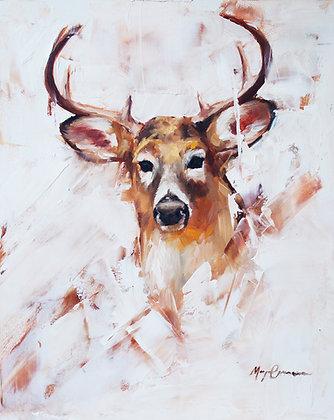 November Buck
