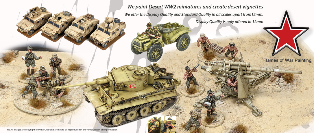 FOWP Desert warfare painted miniatures