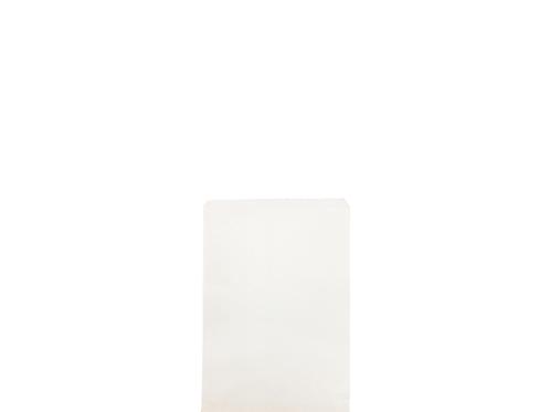 TF 1SQ paper bag
