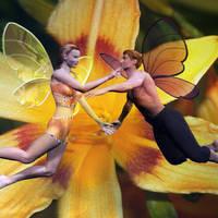 A-Winged-Romance.jpg