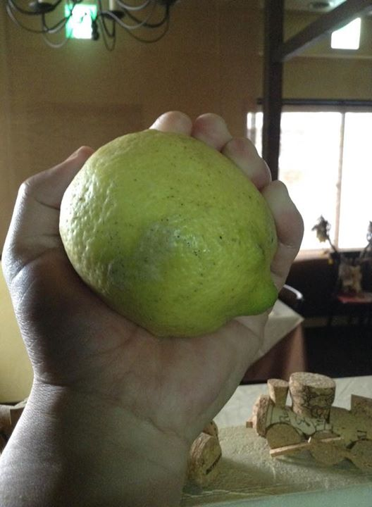 Facebook - 巡り巡って、ぽんぽこさんの檸檬が僕の手に☆*:.。. o(≧▽≦)o .。.jpg