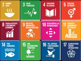 ¿Conoces los 17 Objetivos de Desarrollo Sostenible?