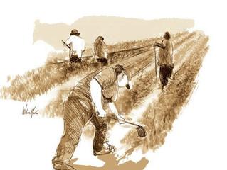 No hay desarrollo nacional sin desarrollo rural