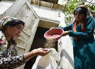 Estado de la Seguridad Alimentaria y Nutricional