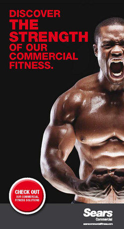 Sears Commercial Fitness DM