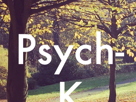 Hacking your subconscious:  My experience with Psych-K therapy
