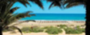 monica beach.jpg