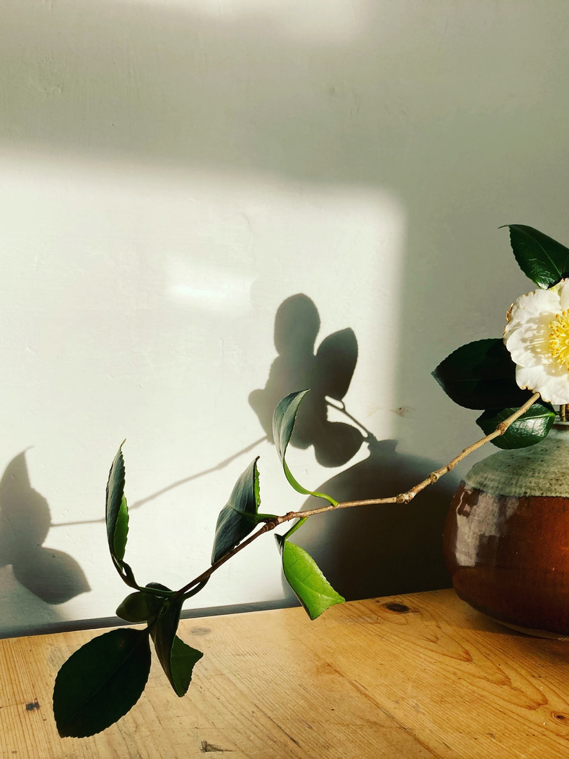 Simple floral display