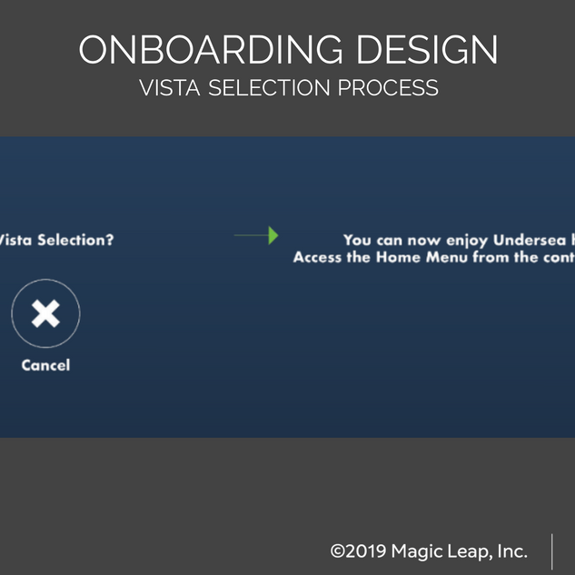 Vista Selection Process Design