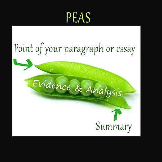 Construct your paragraphs or essays
