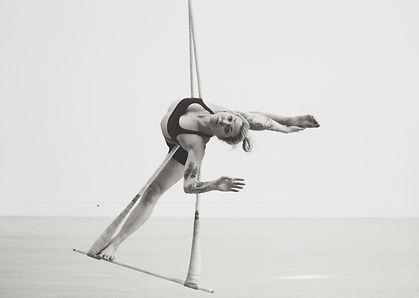 ropebalancetrapeze.JPG