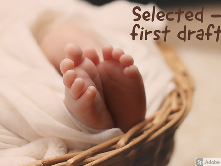 Selected (1st draft)