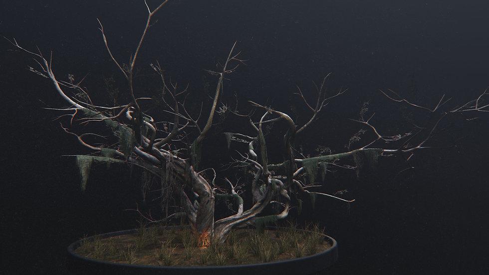 swamp_tree.jpg