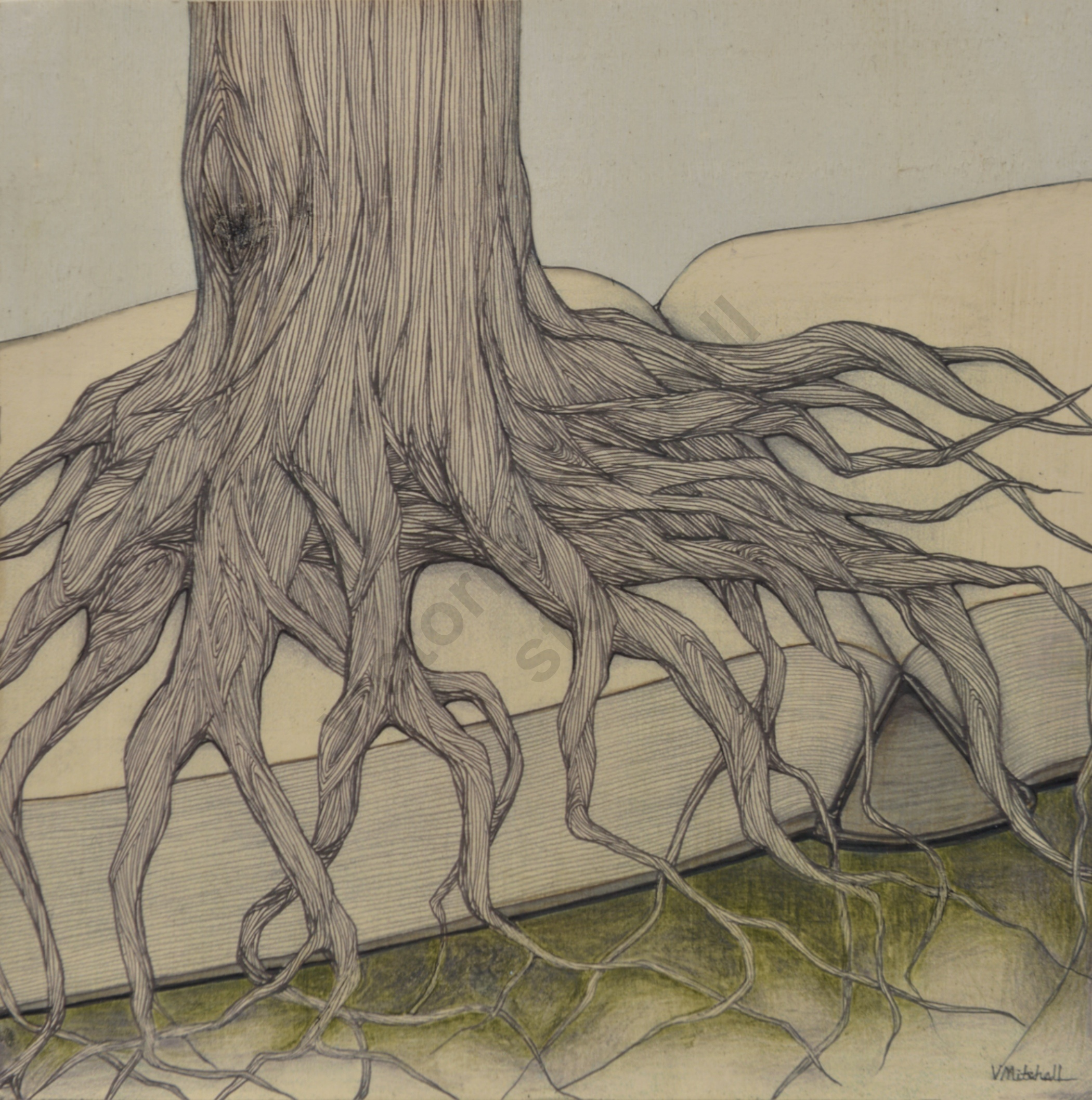 Roots of Knowledge