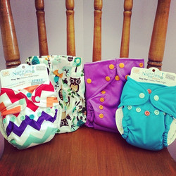 Nuggles Cloth Diapers