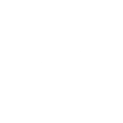 Icons-Piggy-W-LARGE.png