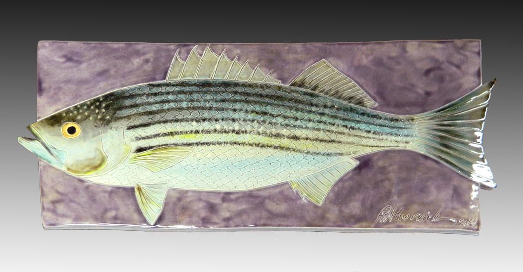 Striped Bass