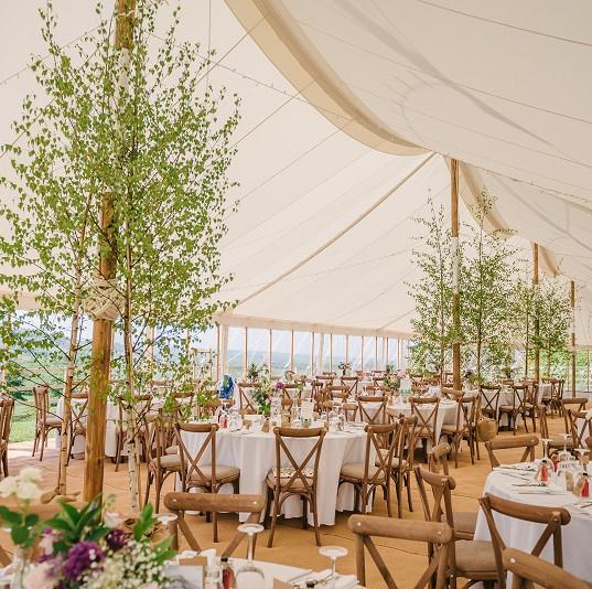 Country Wedding Reception with indoor tr
