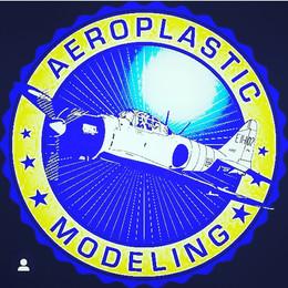 Aeroplastic Modeling