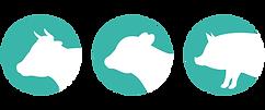 Kuh-Kalb-Schwein Icons.png