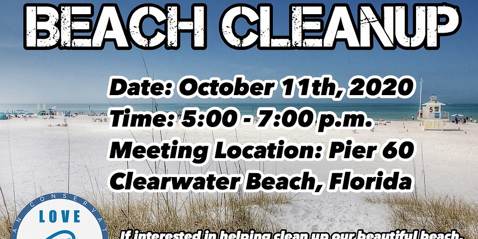 CLEARWATER FL CLEANUP