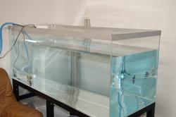 アクリル水槽4