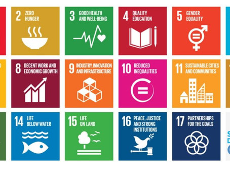 Using SDGs to Drive your Company's Sustainability & Purpose Agenda: Five Examples in the Privat