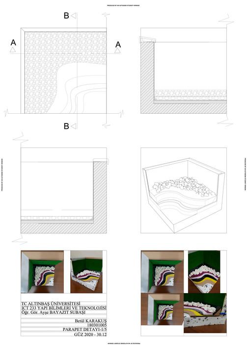180301005-BETÜL KARAKUŞ PAFTA copy.jpg