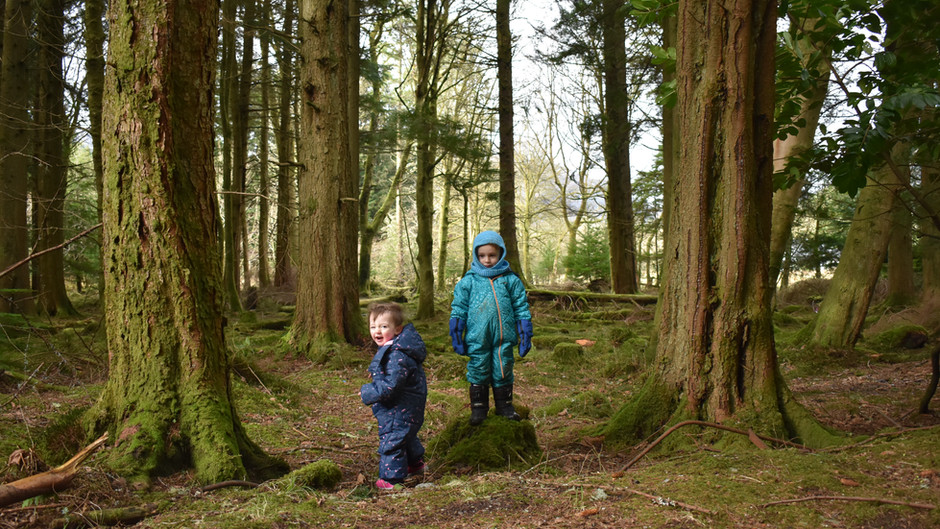 Puck's Glen: aptly named, as we were bewitched