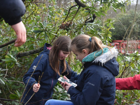 Our Introduction to Geocaching: the real treasure was finding a hobby this awesome!