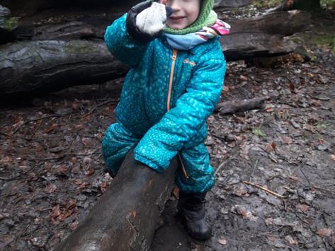Woodlands Outdoor Kindergartens